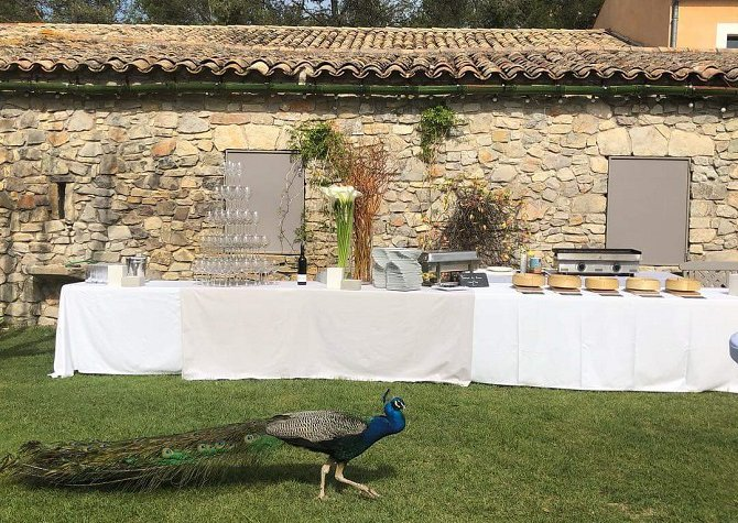 Sun and Conviviality at Pic Saint Loup - April 2019, 50 people